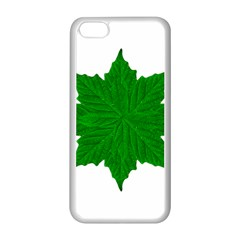 Decorative Ornament Isolated Plants Apple iPhone 5C Seamless Case (White)