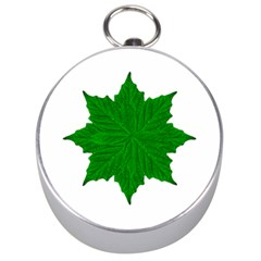 Decorative Ornament Isolated Plants Silver Compass