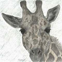 Giraffe Canvas 12  x 12  (Unframed)