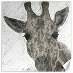 Giraffe Canvas 16  x 16  (Unframed)