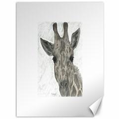 Giraffe Canvas 36  X 48  (unframed)