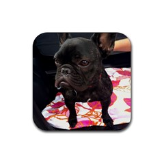 French Bulldog Sitting Drink Coasters 4 Pack (square)