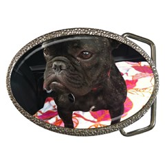 French Bulldog Sitting Belt Buckle (Oval)