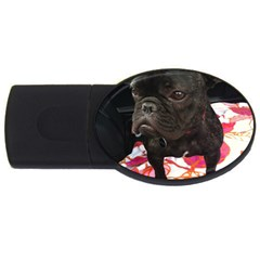 French Bulldog Sitting 2gb Usb Flash Drive (oval)