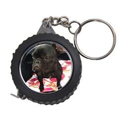 French Bulldog Sitting Measuring Tape