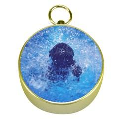 French Bulldog Swimming Gold Compass
