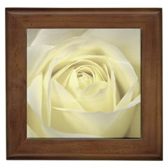 Cream Rose Framed Ceramic Tile