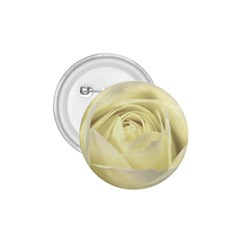 Cream Rose 1.75  Button