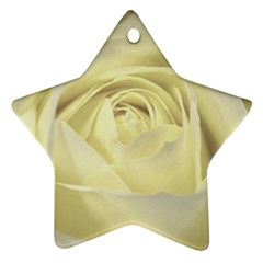 Cream Rose Star Ornament (two Sides)