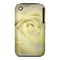 Cream Rose Apple iPhone 3G/3GS Hardshell Case (PC+Silicone)
