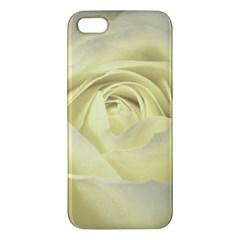 Cream Rose Iphone 5s Premium Hardshell Case