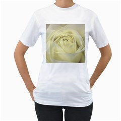 Cream Rose Women s T Shirt (white)