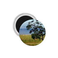 Sea Of Galilee 1 75  Button Magnet
