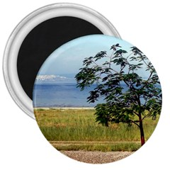 Sea Of Galilee 3  Button Magnet