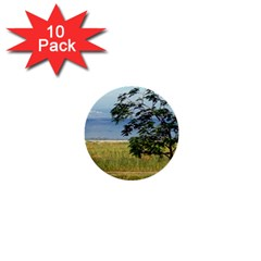 Sea Of Galilee 1  Mini Button (10 pack)