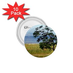 Sea Of Galilee 1 75  Button (10 Pack)
