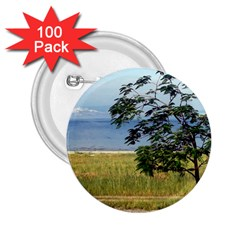 Sea Of Galilee 2 25  Button (100 Pack)