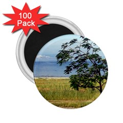 Sea Of Galilee 2 25  Button Magnet (100 Pack)