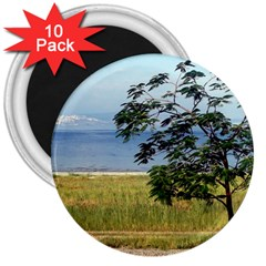 Sea Of Galilee 3  Button Magnet (10 Pack)