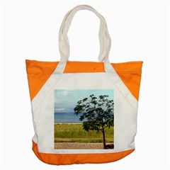 Sea Of Galilee Accent Tote Bag