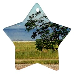 Sea Of Galilee Star Ornament (Two Sides)