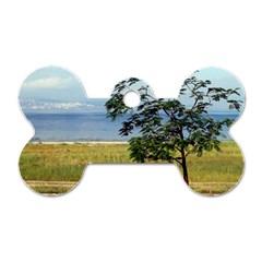 Sea Of Galilee Dog Tag Bone (two Sided)