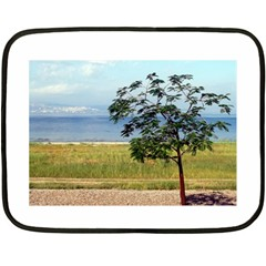 Sea Of Galilee Mini Fleece Blanket (Two Sided)