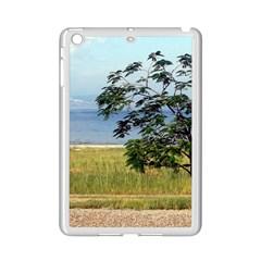 Sea Of Galilee Apple Ipad Mini 2 Case (white)