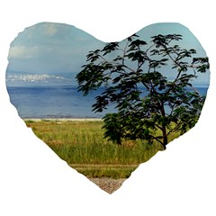 Sea Of Galilee 19  Premium Heart Shape Cushion