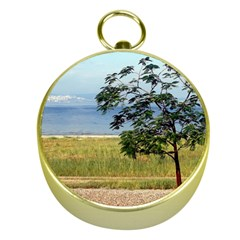 Sea Of Galilee Gold Compass