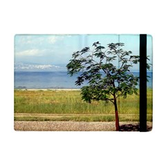Sea Of Galilee Apple Ipad Mini 2 Flip Case