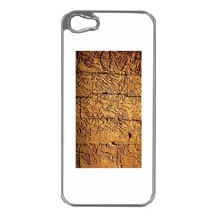 Ancient Egypt Mural 12aug 2014 Apple Iphone 5 Case (silver)