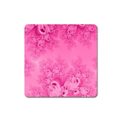 Soft Pink Frost Of Morning Fractal Magnet (square)
