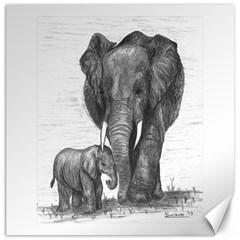 Elephant Canvas 16  x 16  (Unframed)