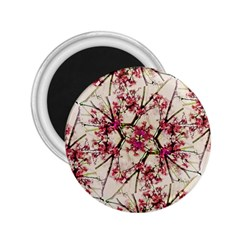 Red Deco Geometric Nature Collage Floral Motif 2 25  Button Magnet