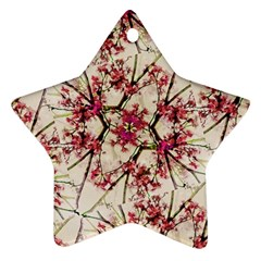 Red Deco Geometric Nature Collage Floral Motif Star Ornament (two Sides)