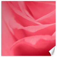 Pink Silk Effect  Canvas 20  X 20  (unframed)