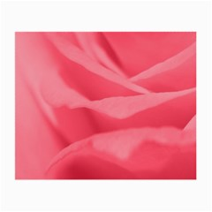 Pink Silk Effect  Glasses Cloth (small, Two Sided)