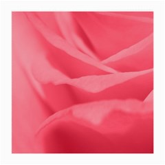 Pink Silk Effect  Glasses Cloth (medium, Two Sided)