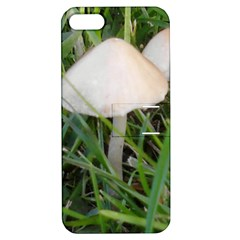 Not Just Another Mushroom Apple Iphone 5 Hardshell Case With Stand