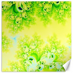 Sunny Spring Frost Fractal Canvas 12  x 12  (Unframed)