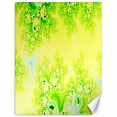 Sunny Spring Frost Fractal Canvas 18  x 24  (Unframed)