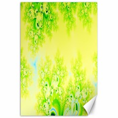 Sunny Spring Frost Fractal Canvas 20  x 30  (Unframed)