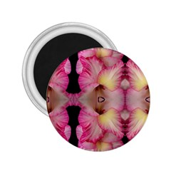 Pink Gladiolus Flowers 2 25  Button Magnet