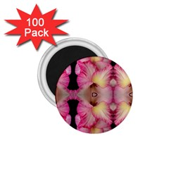 Pink Gladiolus Flowers 1.75  Button Magnet (100 pack)