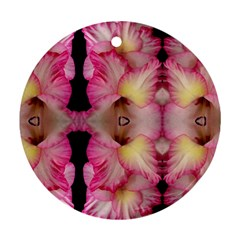 Pink Gladiolus Flowers Round Ornament (two Sides)