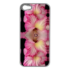Pink Gladiolus Flowers Apple Iphone 5 Case (silver)