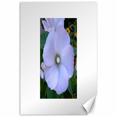 Moon Flower Canvas 12  x 18  (Unframed)