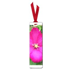 Clem Pink Small Bookmark