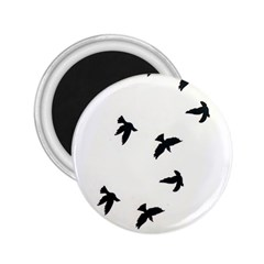 Waterproof Temporary Tattoo      Three Birds 2 25  Button Magnet